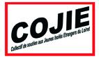 Microsoft Word - COJIE.doc