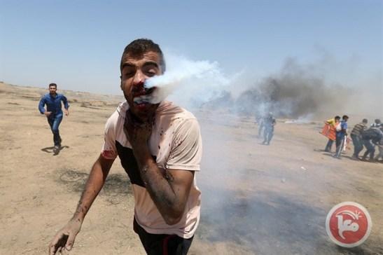 Gaza 6-1