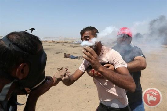 Gaza 6-2