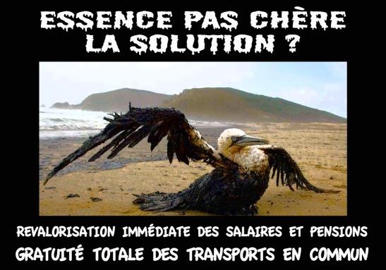 essence V1