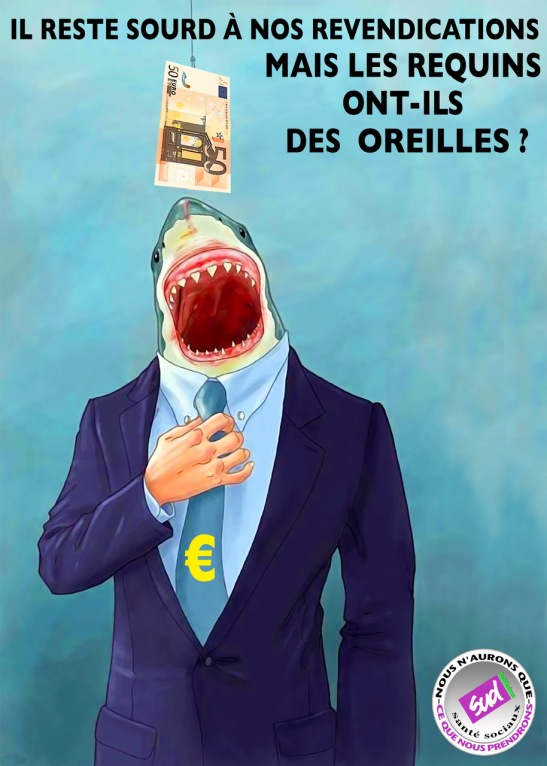Oreilles requins.jpeg