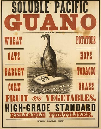 Guano-poster