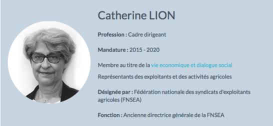 catherine-lion