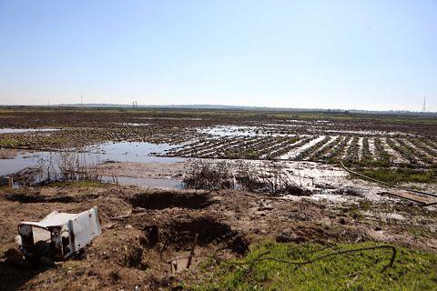 Terres inondées